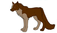 Wolves from The guardians