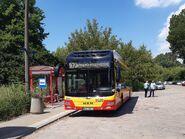 970 (autobus, Elsnerów)