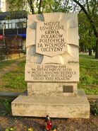 Wolska, Płocka (kamień)