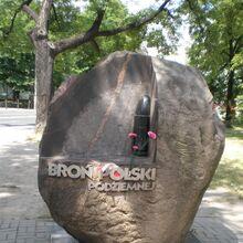 Plac Grzybowski (kamień).JPG
