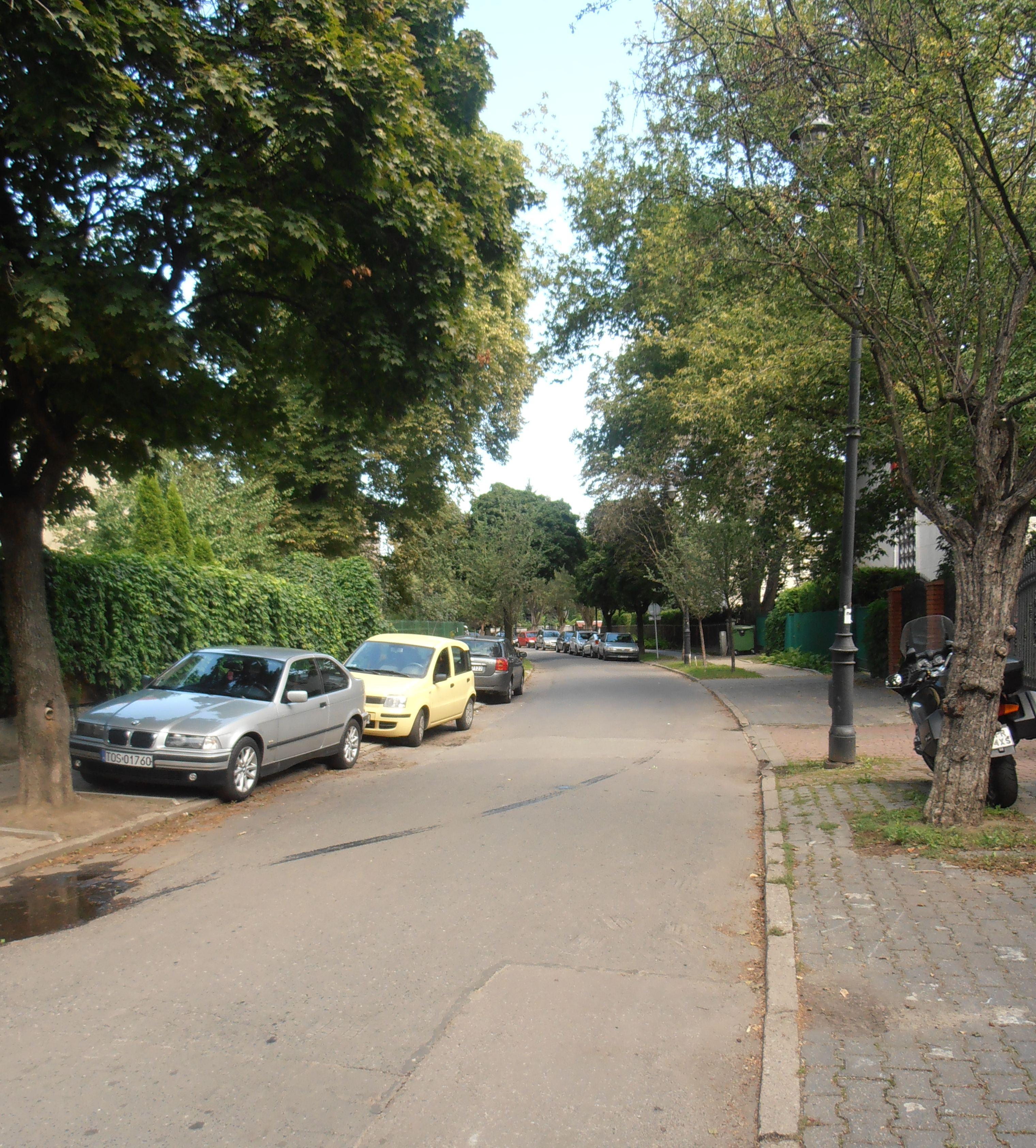 Ulica Kryniczna