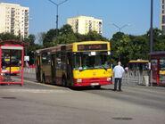 DSC03538