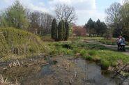 Ogród Botaniczny w Powsinie (ogród bylinowy)