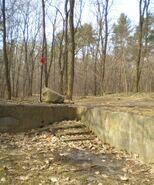 Lasek na Kole (ruiny 3)
