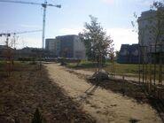 Nasz Park (3)