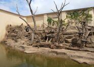 Ogród Zoologiczny (wybieg dla małp)