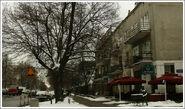 Francuska 20 Rue de Paris
