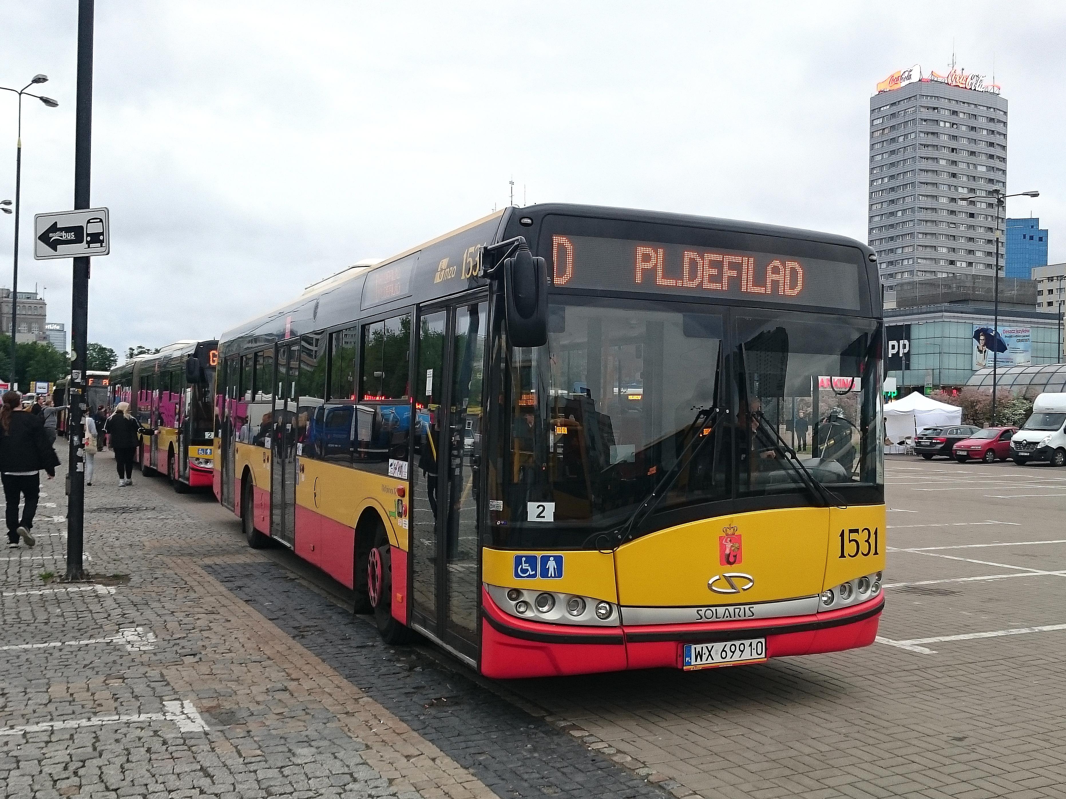 D (linia autobusowa)