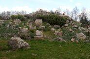 Ogród Botaniczny w Powsinie (dział roślin górskich)
