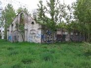 Moczydlowska-ruiny (2)