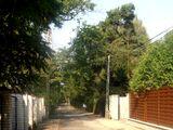 Ulica Starzyńskiego w Wesołej