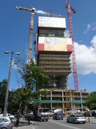Cosmopolitan budowa