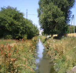 Potok Służewiecki (Przy Grobli, Arbuzowa).JPG