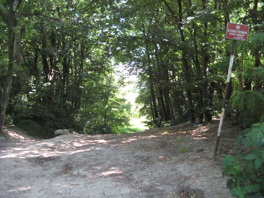 Rezerwat krajobrazowy Skarpa Ursynowska