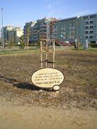 Nasz Park (4)
