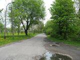 Ulica Lipowczana