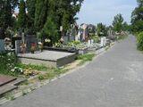 Cmentarz w Gołąbkach