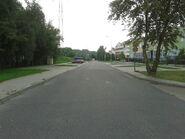 Wilczy Dół (ulica)