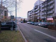 Telekiego (ulica1)