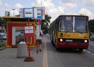 Białołęka-Ratusz (przystanek, autobus 509)