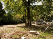 Ogród Krasińskich (remont)
