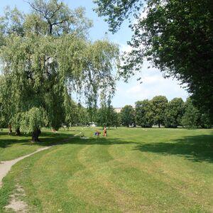 Park Józefa Polińskiego (Szaserów).JPG