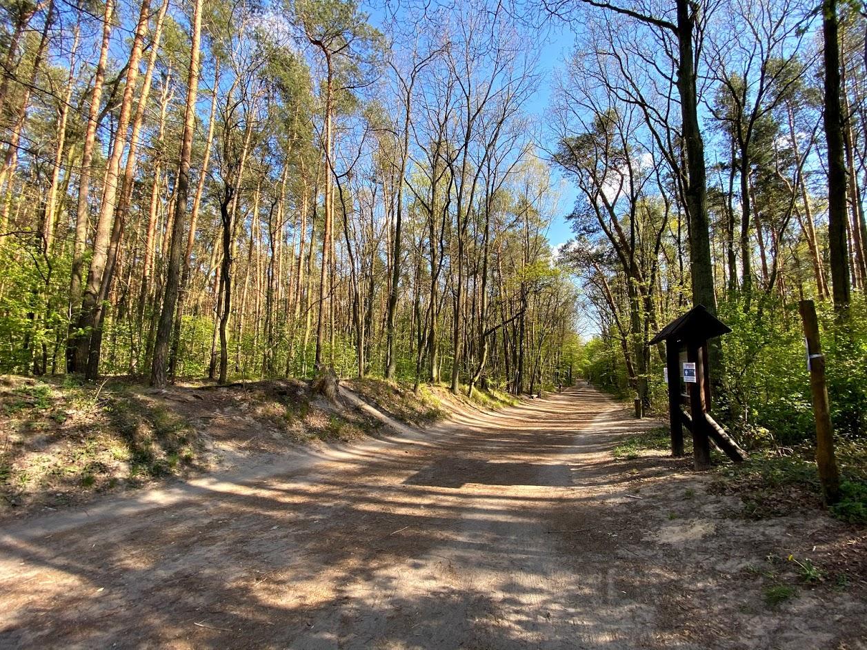 Rezerwat przyrody Las Kabacki im. Stefana Starzyńskiego