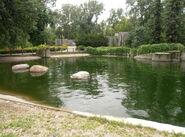 Ogród Zoologiczny (basen dla fok)