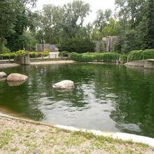 Ogród Zoologiczny (basen dla fok).JPG