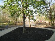 Park Przy Bazantarni (2)
