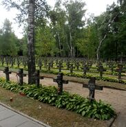 Cmentarz Wojskowy (kw. poległych 1918-1920)