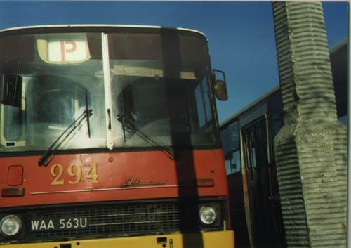 P (linia autobusowa)