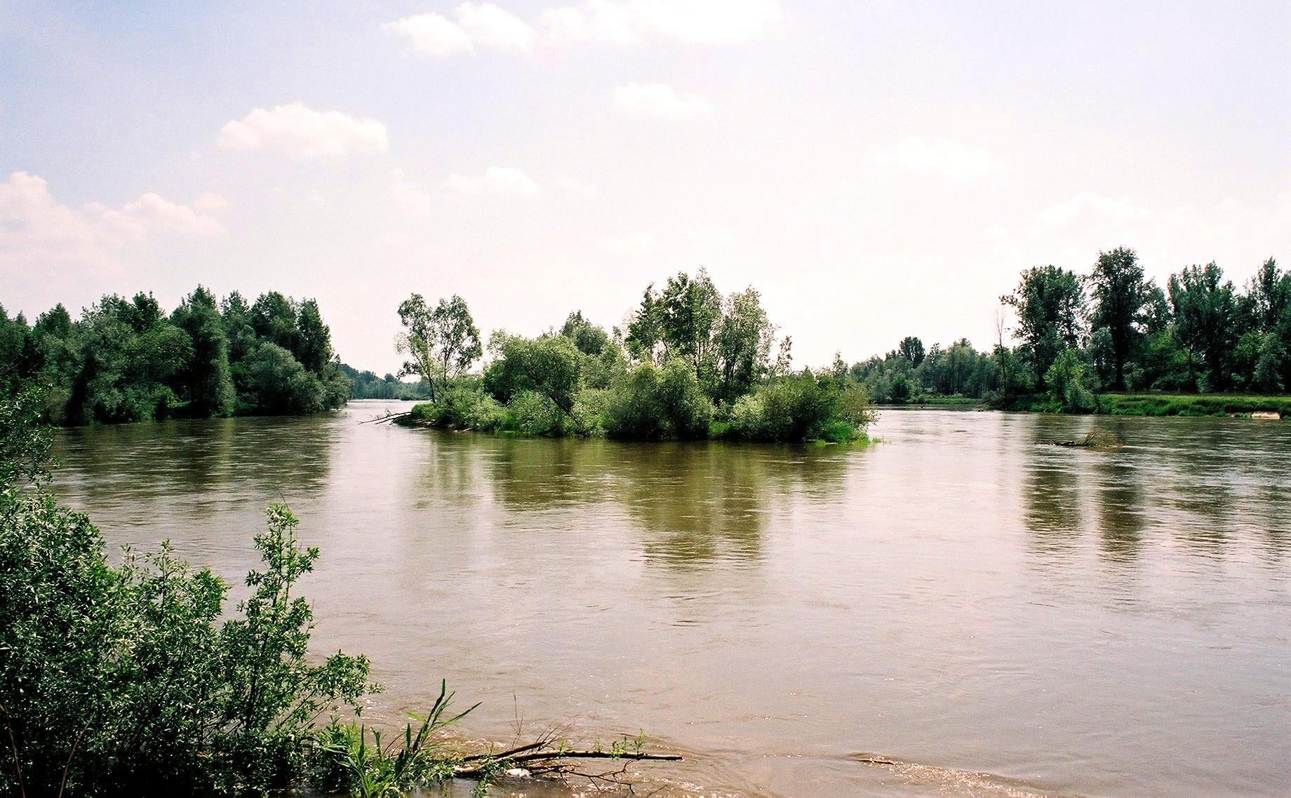 Rezerwat faunistyczny Wyspy Zawadowskie