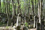 Cmentarz Żydowski na Woli 1