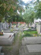 Cmentarz mariawicki2