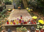 Cmentarz Ewangelicko-Reformowany (nagrobek S. Żeromskiego)