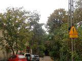 Ulica Zuga