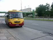 Linia164