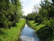 Kanal Brodnowski Ksiecia Ziemowita