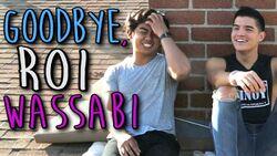 Goodbye, Roi Wassabi.jpg