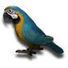 T Inv Icon T Parrot.png