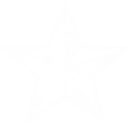 Insignia Star.png
