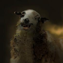 Wl2 portrait sheep 01.tex.png