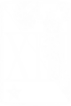 Insignia XIII.png