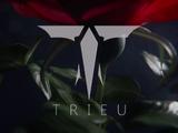 Trieu Industries