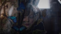 S1e8 blue butterfly