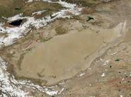 Wfm tarim basin