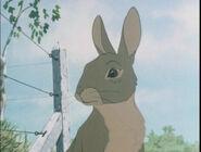 Hazel in the film