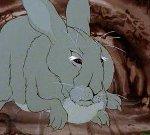 Chief Rabbit
