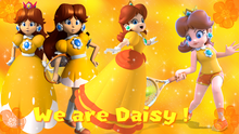 We Are Daisy banner by Princess Daisy ding dong.png
